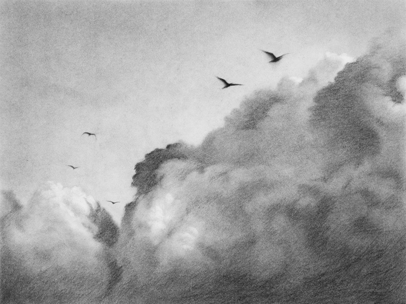 Toby Carr Fine Clouds 3 drawing