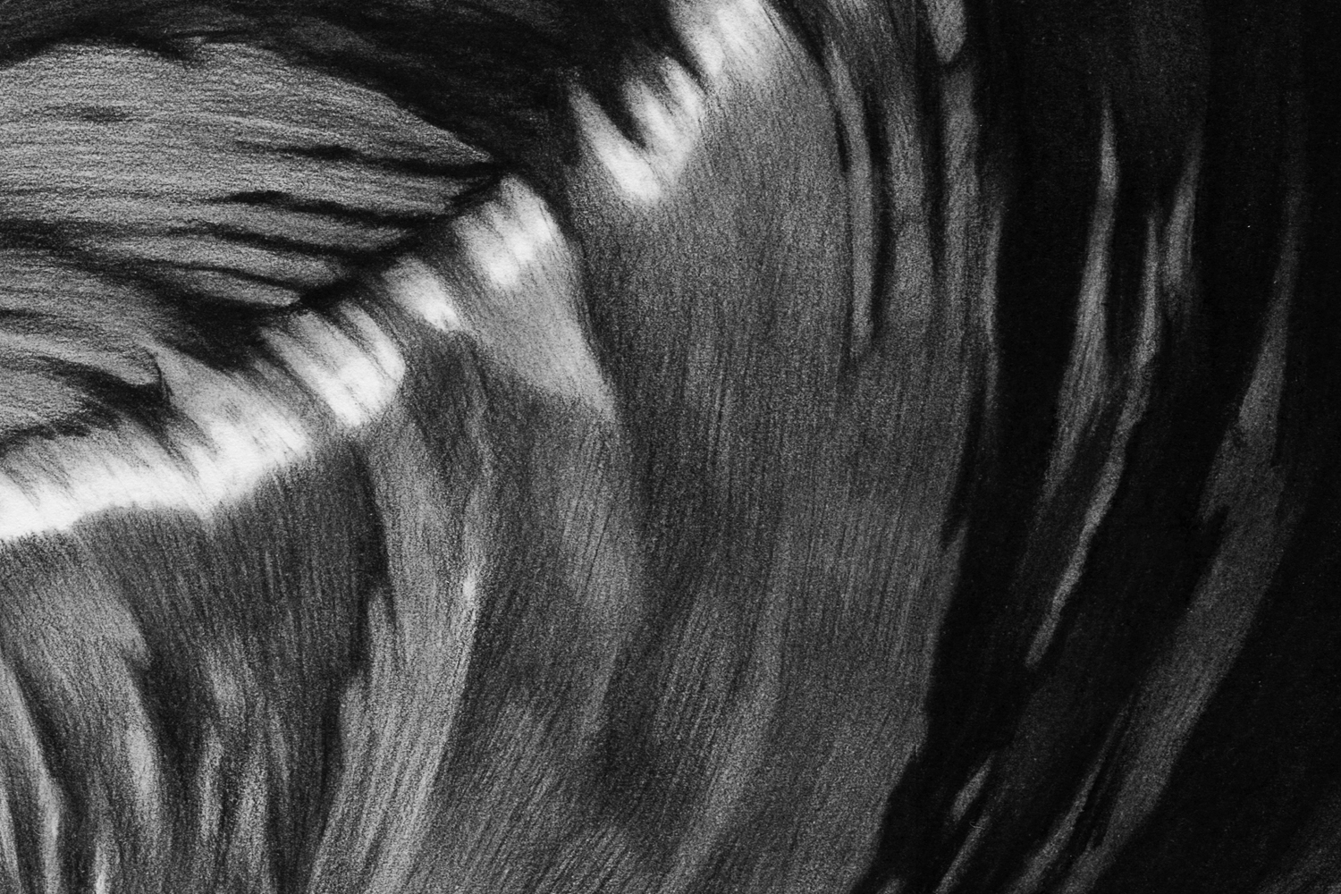 Ride-the-wave-detail1