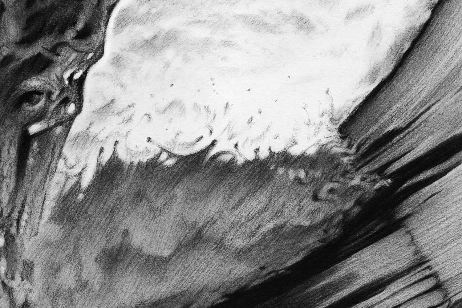 Ride-the-wave-detail3