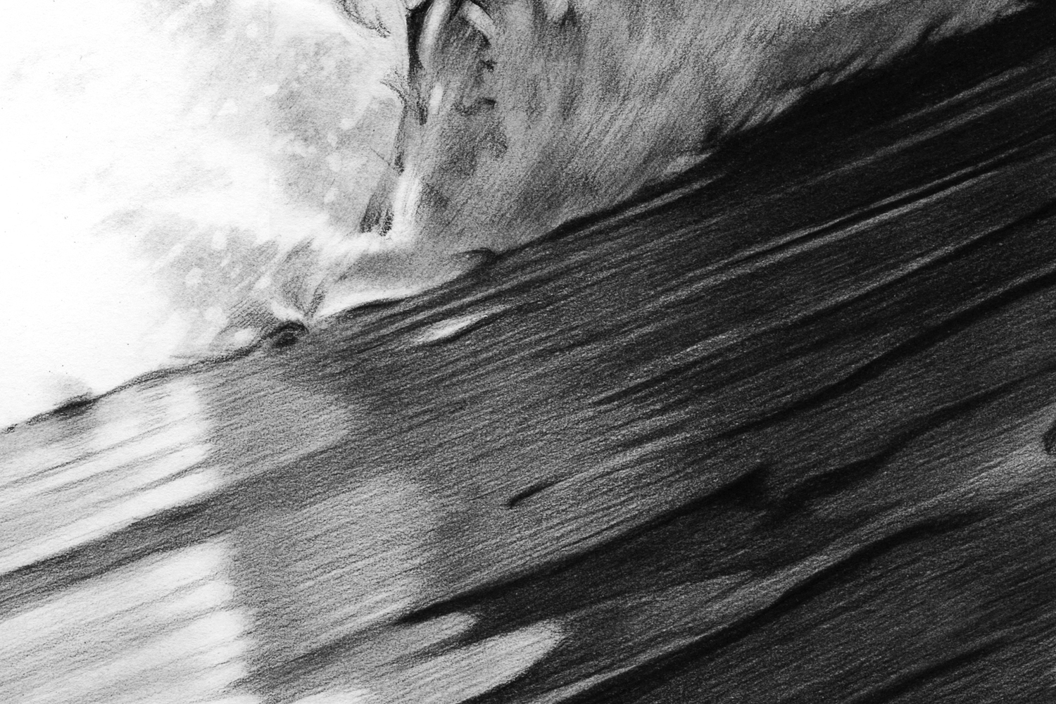 Ride-the-wave-detail4