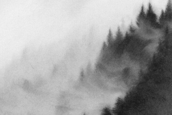 Zen-Mountain-detail